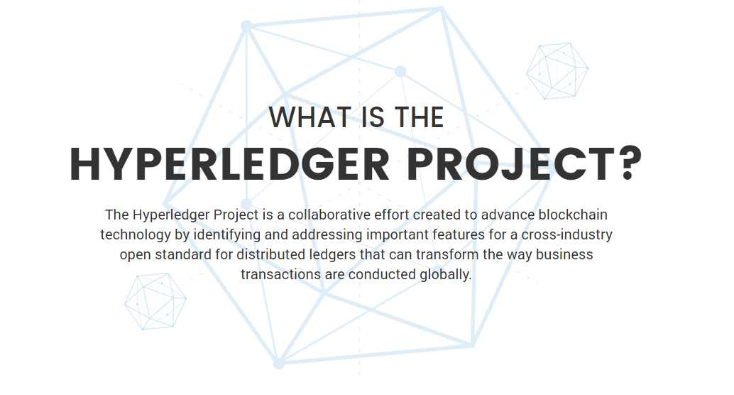 The Hyperledger Project